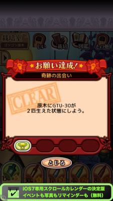 IMG 0918