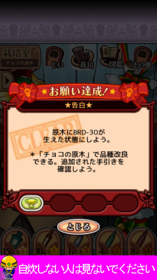 Iphone6 20140212 50