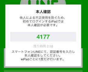 line_ipad_219