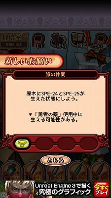 IMG_0260