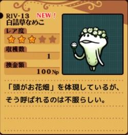 Riv13