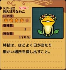 Riv22