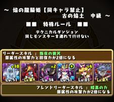 Ryuki jotyu 003