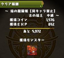 Ryuki jotyu 024