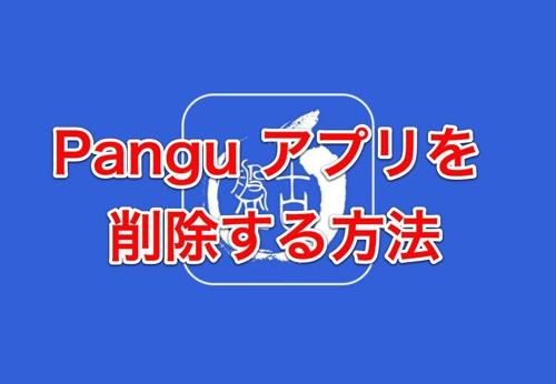 Pangu8 delete 015