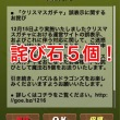 paz_20141217_016.jpg