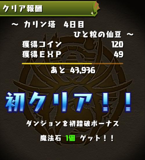IMG 4342