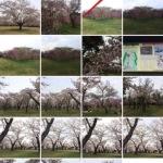 iPhoneの標準メールアプリで複数の写真を一気に添付する方法