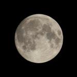 今夜は中秋の名月!月を撮影してみた!